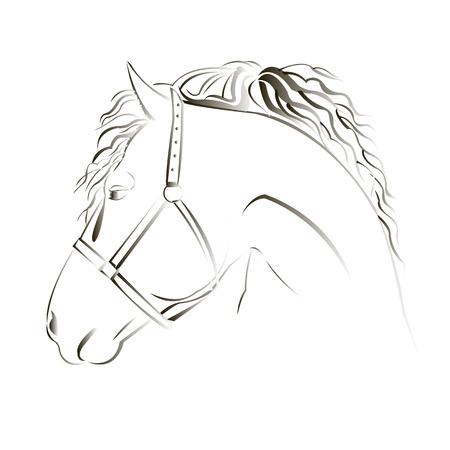 head mustang icon equestrian animal black farm