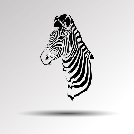 Animal zebra vector illustration wild mammal white black zoo striped.