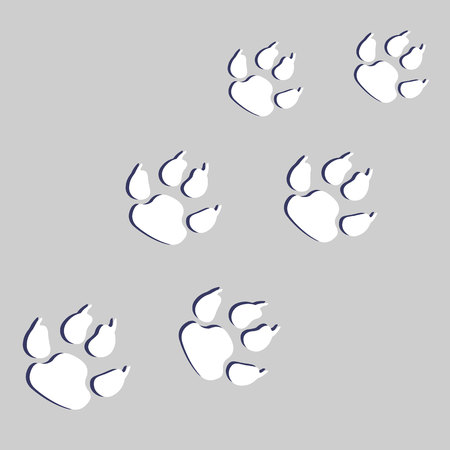 interesting: animal print paw foot shape illustration