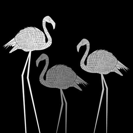 bird flamingo illustration exotic art silhouette beauty wild nature