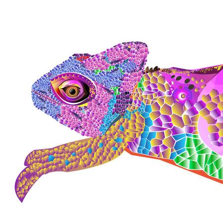 Camaleón lagarto dibujo gráficos en color detalles rama Foto de archivo - 74690392