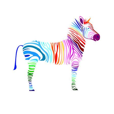 animal zebra vector illustration wild mammal white black zoo striped
