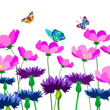 Knapweed flower on white background. vector illustration of blue little flowers butterfly Illustration