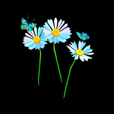 flower vector floral white summer chamomile plant