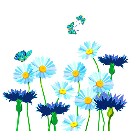 flower vector floral summer chamomile, butterfly, insect