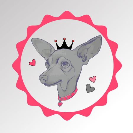 grey eyed: dog vector small drawing illustration pet animal