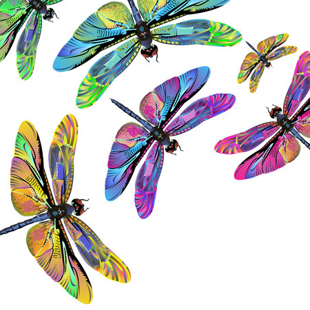 vector color art dragonfly nature wildlife fly Stok Fotoğraf - 74690669