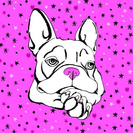 Bulldog, dog, animal, french, vector, illustration, pet, breed, cute, drawing, puppy.