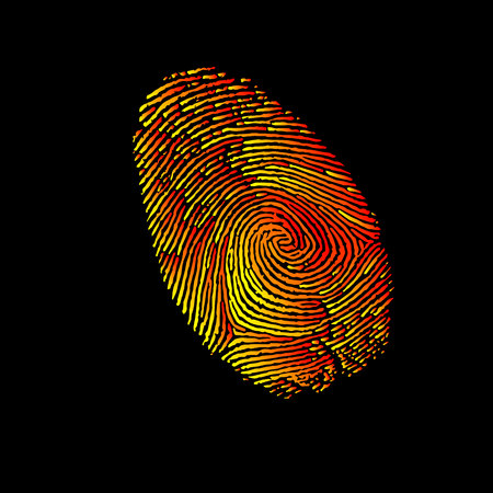 Print, finger, fingerprint, vector, crime, identity, thumb, thumbprint, unique, security.