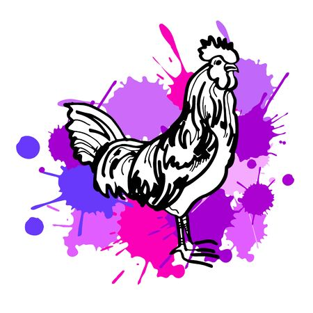 year, new, rooster, symbol, chinese, decoration, vector, sign, illustration, festival Illustration