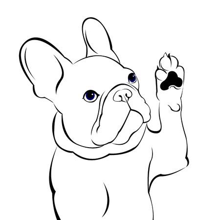 hond, vector, ras, schattig, huisdier, dier, bulldog, frans, frans bulldog Stock Illustratie