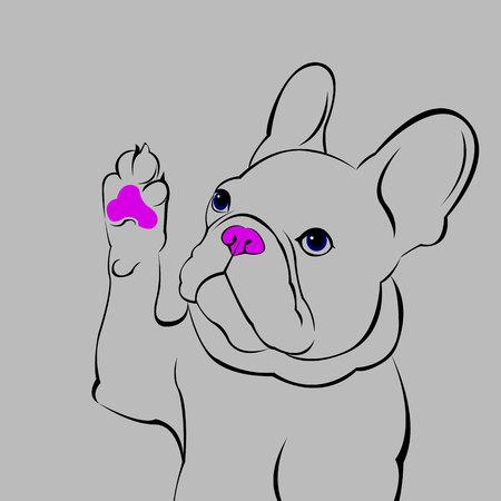 dog, vector, breed, cute, pet, animal, bulldog, french, french bulldog