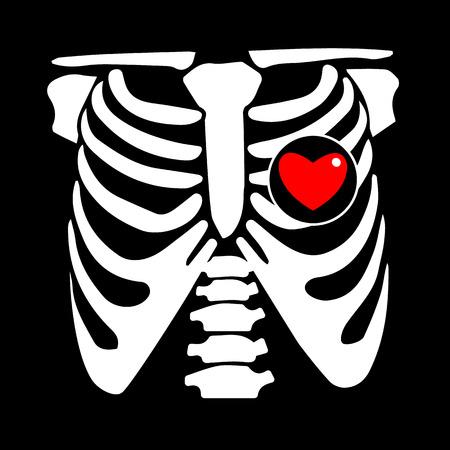 cofre, costilla, vector, esqueleto, corazón, hueso, ilustración, rayo, radiografía, película