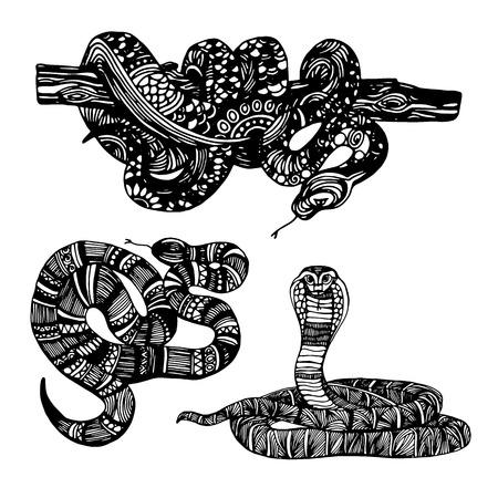 python skin: Cute Animals Snake. Cute funny snake. T-shirt Typography Graphics, Illustration. Illustration