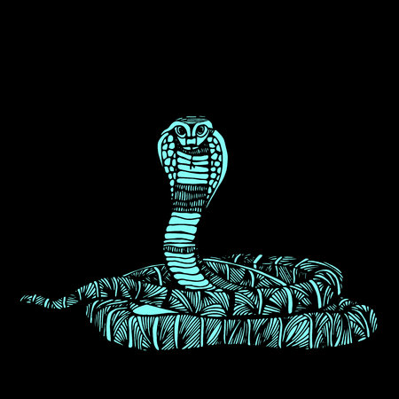 Cute Animals Snake. Cute funny snake. T-shirt Typography Graphics, Illustration. Illustration