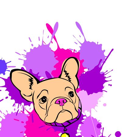 opinions: dog vector breed cute pet animal bulldog french Illustration