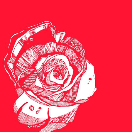 linearity: Flower, rose, spring, summer, background, botanical, garden, art, nature.