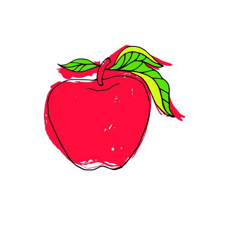 vector, fruit, leaf, illustration, apple, fresh, nature, food