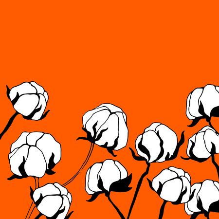 boll: cotton, vector, plant, natural, illustration, textile, white, organic, flower