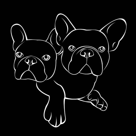 dog vector breed cute pet animal bulldog french Illustration