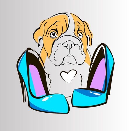 bulldog english dog breed portrait illustration face