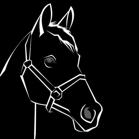 vector, horse, animal, illustration, mustang, mammal, design, wild, stallion Illustration