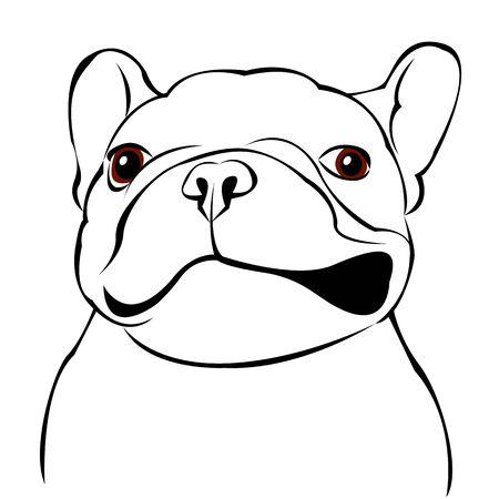 chien, vecteur, race, mignon, animal familier, animal, bouledogue, français Vecteurs