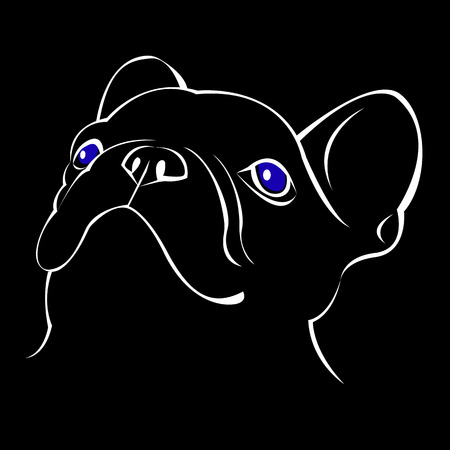 vector close up portrait of the domestic dog French Bulldog breed Ilustrace