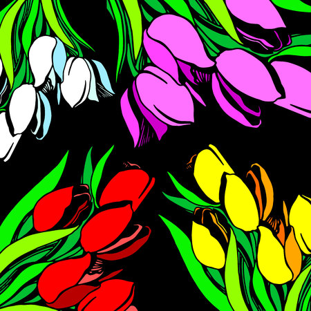 vector floral illustration nature tulip green spring