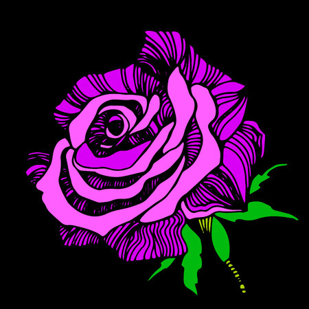 Vector multicolor rose flowers. Vector stylized roses.
