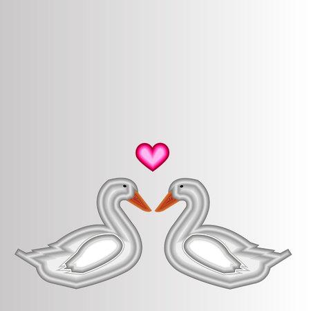 duck vector bird background animal beak cartoon cute nature illustration graphic drawing white Illustration