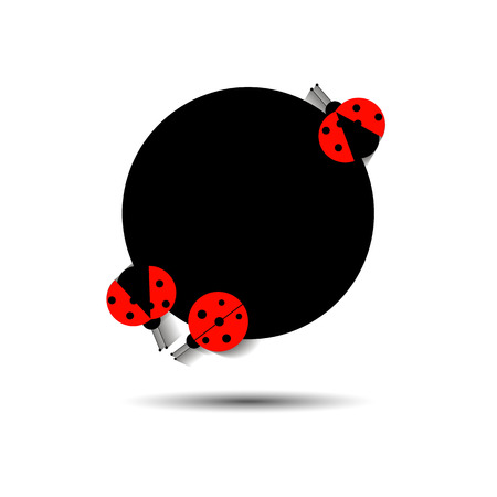 ladybug vector red illustration colored beetle insect nature
