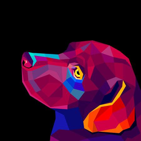 labrador: Vector image of an dog labrador on black background