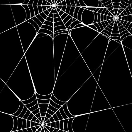 spider vector halloween illustration black design white element arachnid trap background Illustration