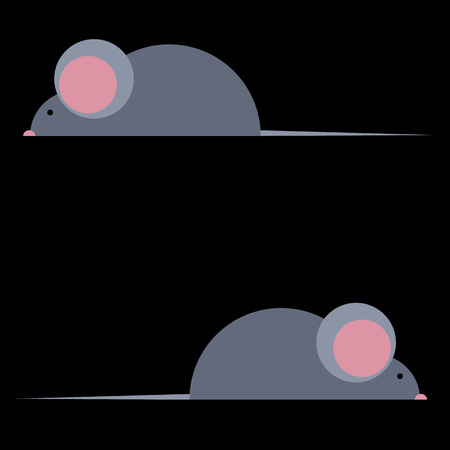 vector mouse illustration rat gnawing loves cheese gray tail cute whiskers teeth nose