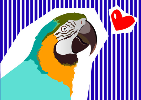 macaw: parrot bird vector tropical macaw red colorful Illustration