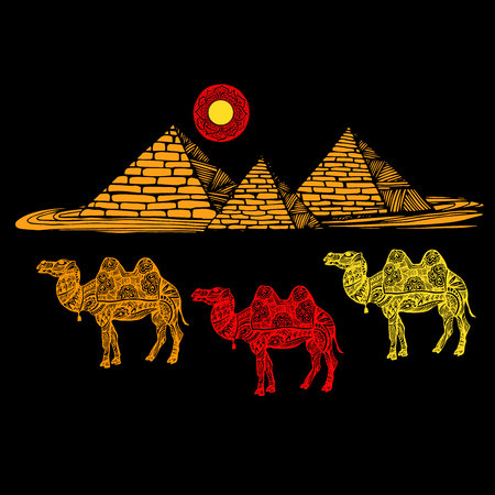 Vector image of a camel on a background of the pyramids Illustration