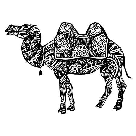 Egypt, Ariabia, camel, vector, desert, illustration, animal, nature, travel, sand