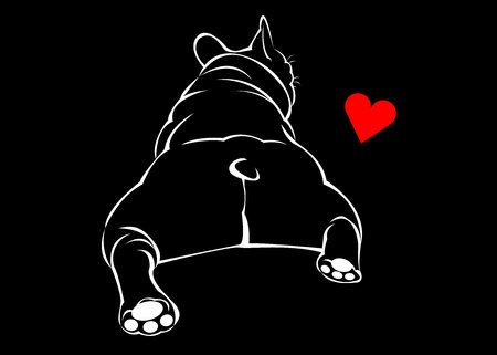 Hond, vector, ras, schattig, huisdier, dier, bulldog, frans.