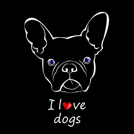 French bulldog background. Vector illustration. Dog, illustration, french