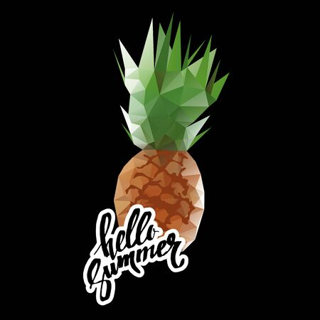 pineapple, vector, fruit, food, tropical, summer, design, illustration, background, sweet Stock Photo