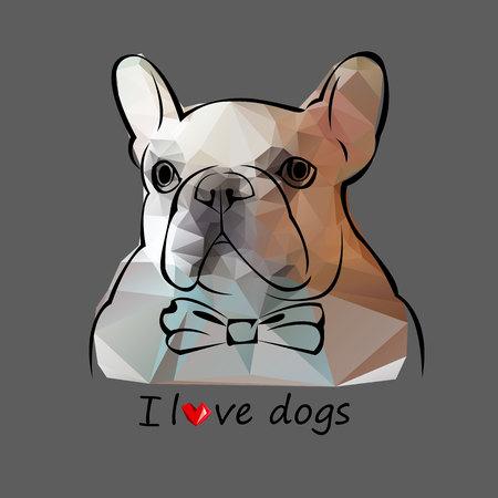 bulldog, dog, animal, french, vector, illustration, pet, breed, cute, drawing, puppy