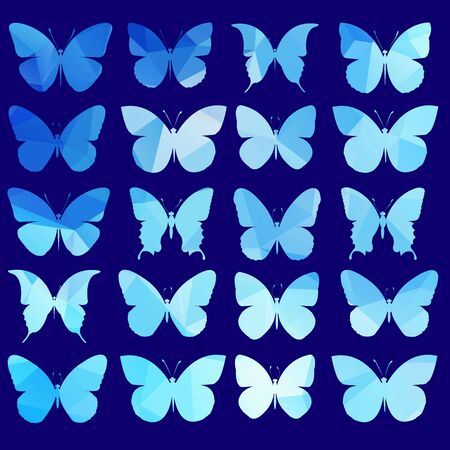 vector, butterfly, insect art, white, color, wallpaper, fly, graphic