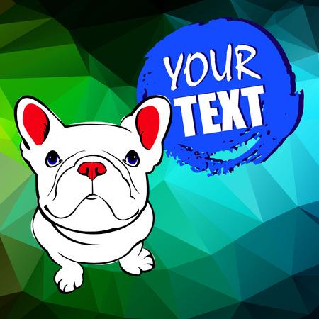 Bulldog, cane, animale, francese, vettore, illustrazione, animale domestico, razza, carino, disegno Archivio Fotografico - 81451842