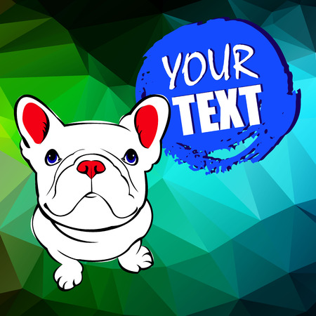 bulldog, dog, animal, french, vector, illustration, pet, breed, cute, drawing