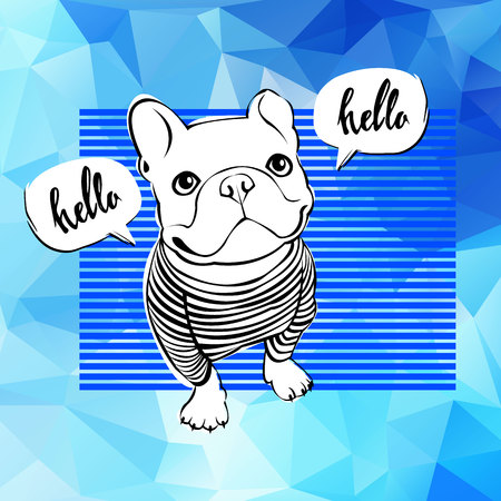 companion: A bulldog, animal, french, vector, cute cartoon illustration, pet, breed.