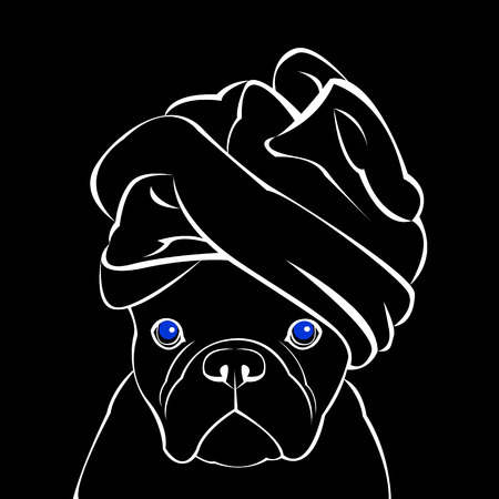 bulldog, dog, animal, french, vector, illustration, pet, breed, cute