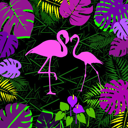 vector bird flamingo illustration pink exotic art silhouette beauty wild