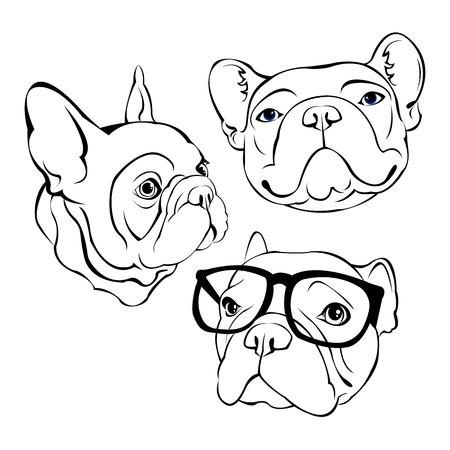 Französische Bulldogge. Vektor-Illustration für ein Poster. Süßer Welpe. Hund in Gläser