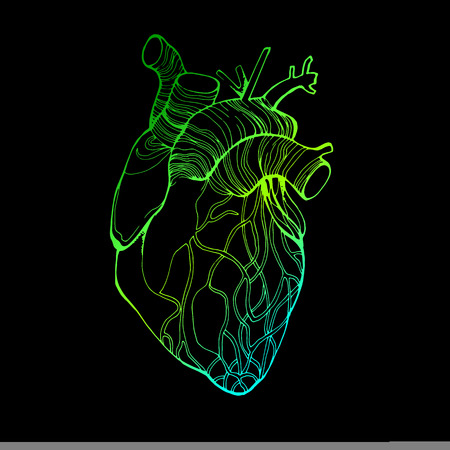 heart, vector, health, love, illustration, life, medical, living, art, graphic